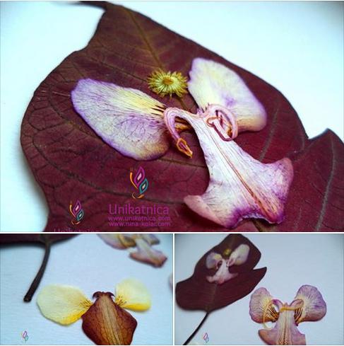 Cvetlični nakit - novi izdelki v nastajanju