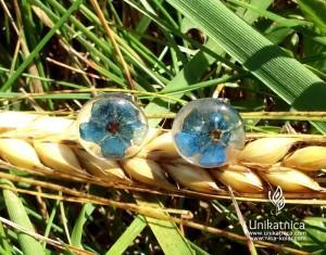 Cvetlični nakit - mali uhani, gozdna spominčica