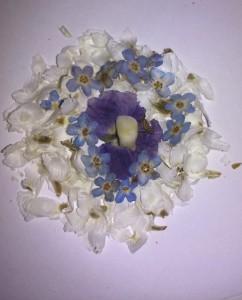 Cvetlična ogrlica s pravim otroškim zobkom - zmagovalna kombinacija spominčic, belega amobiuma ter vijolične krvomočnice.