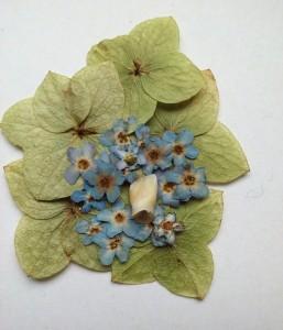 Cvetlična ogrlica s pravim otroškim zobkom - hortenzija, spominčice