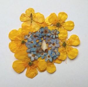Cvetlična ogrlica s pravim otroškim zobkom - zlatice, spominčice