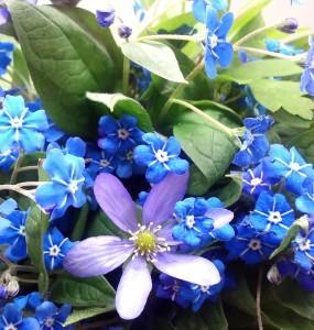 Pomladno cvetje - nova kolekcija cvetlicni nakit 1. del