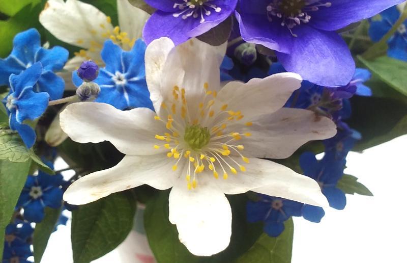 Pomladno cvetje - nastanek pomladne kolekcije cvetlični nakit 2. del