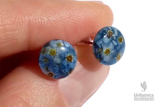 Mini cvetlični uhani s travniškimi spominčicami