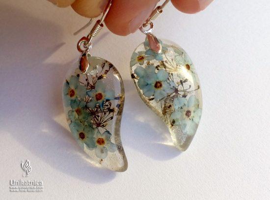 Viseči ročno izdelani uhani iz smole in pravimi cvetovi travniških spominčic iz nove, poletne kolekcije cveltičnega nakita.