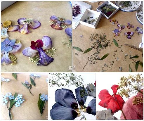 sveža poletno jesenska kolekcija cvetličnega nakita iz pravega cvetja