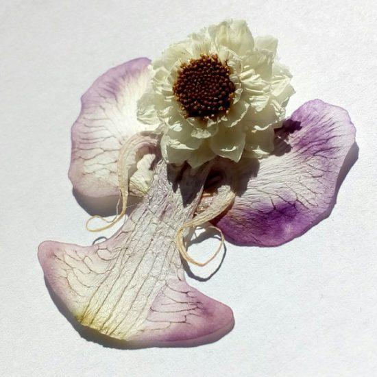 Cvetlični angel - amobum, orhideja