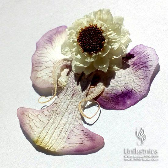 Cvetlični angel - orhideja, amobium