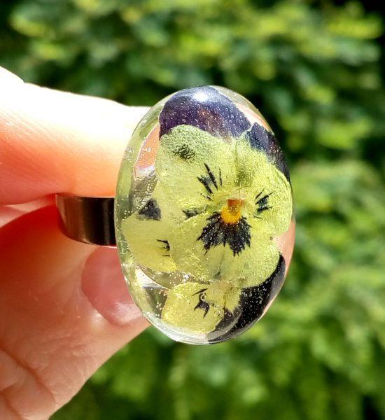Simbolika in pomen cvetja - mačehe, prstan