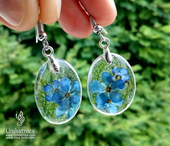 Simbolika in pomen cvetja - (gozdne) spominčice, uhani