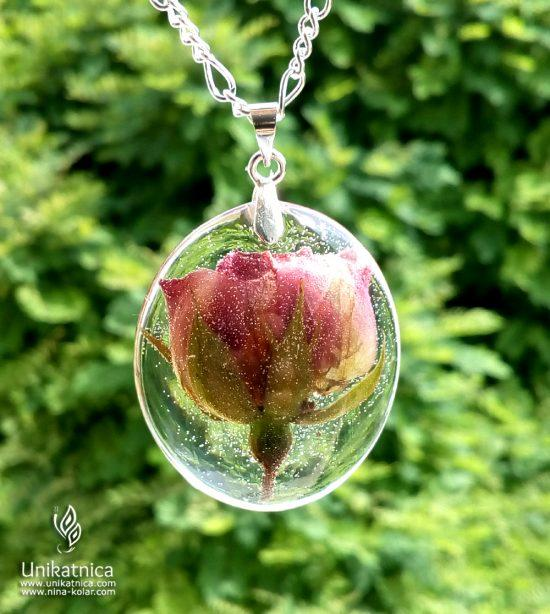 Simbolika in pomen cvetja - divja vrtnica, ogrlica